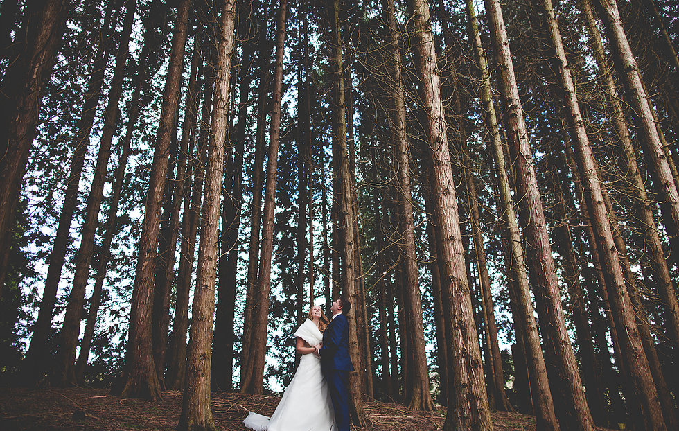 Couple looking up at very tall trees in Staffordshire