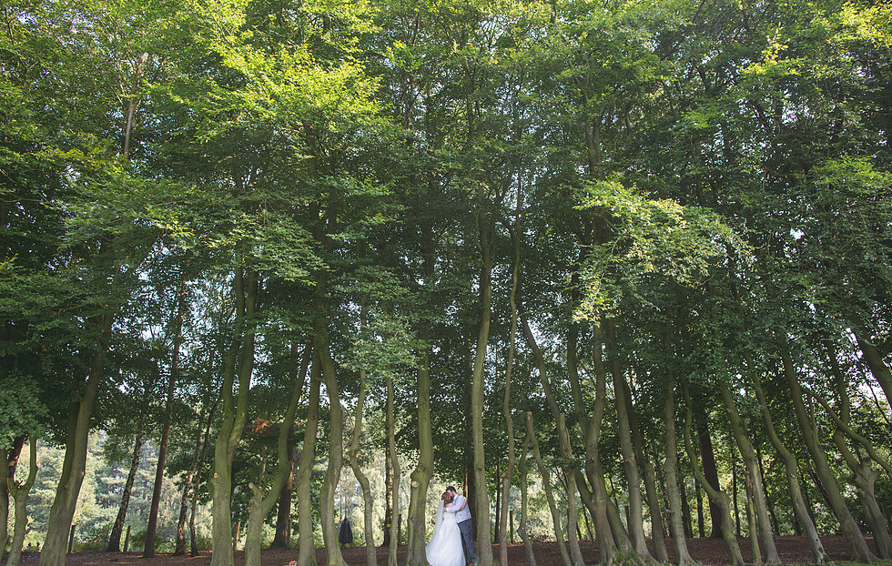 Bride and groom kissing in tall trees and Nunsmere